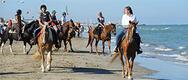 A Cavallo del Mare 2017 al Fantini Club di Cervia - DAL 7 AL 08/10/2017